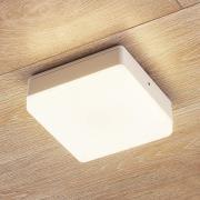 LED-loftlampe Thilo, IP54, hvid, 16 cm, TL-sensor