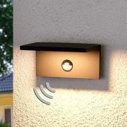 LED-udendørsvæglampe Darina, bevægelsessensor