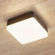 LED-loftlampe Thilo, IP54, grå, 16 cm, TL-sensor
