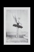 Plakat Serfina 50x70cm