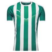 PUMA Spilletrøje LIGA Striped - Grøn/Hvid Børn